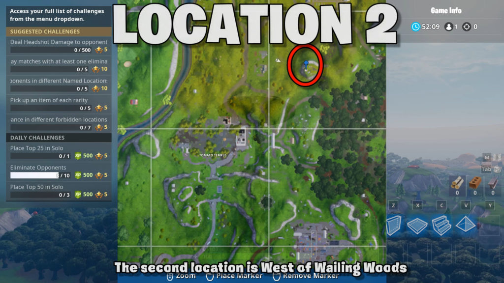location 2 - west of wailing woods