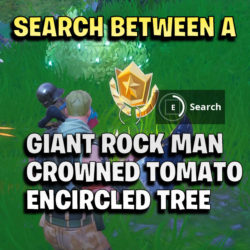 Search between a Giant Rock Man, a Crowned Tomato and an Encircled Tree thumb