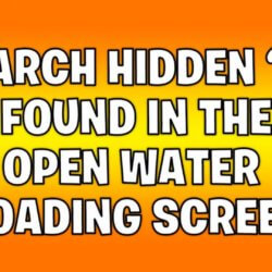 search hidden o found in the open water loading screen