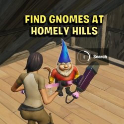 Find gnomes at homely hills fortnite